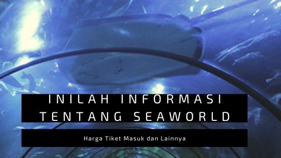 Inilah Informasi Tentang Seaworld, Harga Tiket Masuk dan Lainnya