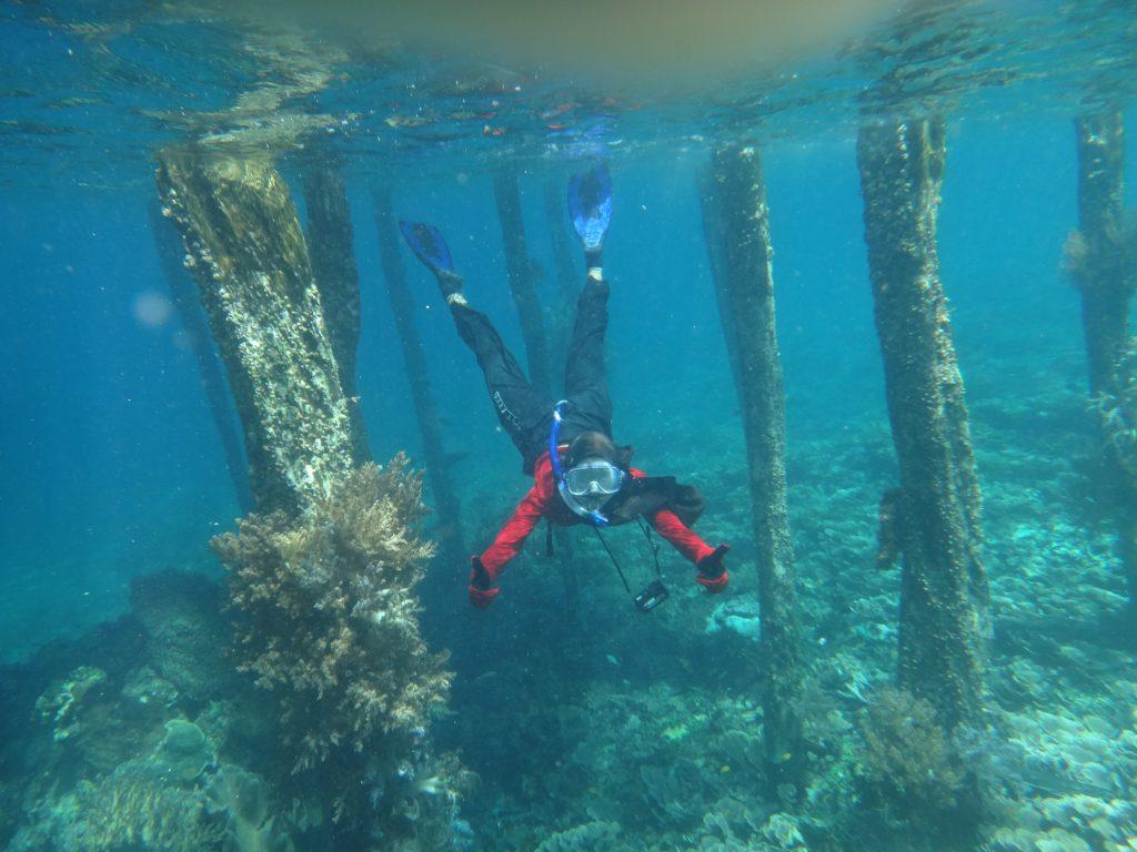 Snorkelling di dekat dermaga Pulau Arborek Raja Ampat