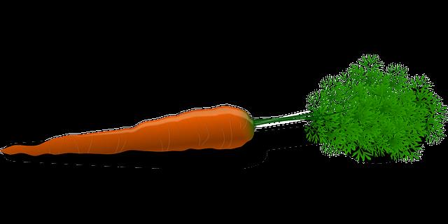 wortel salah satu sumber vitamin a untuk anak